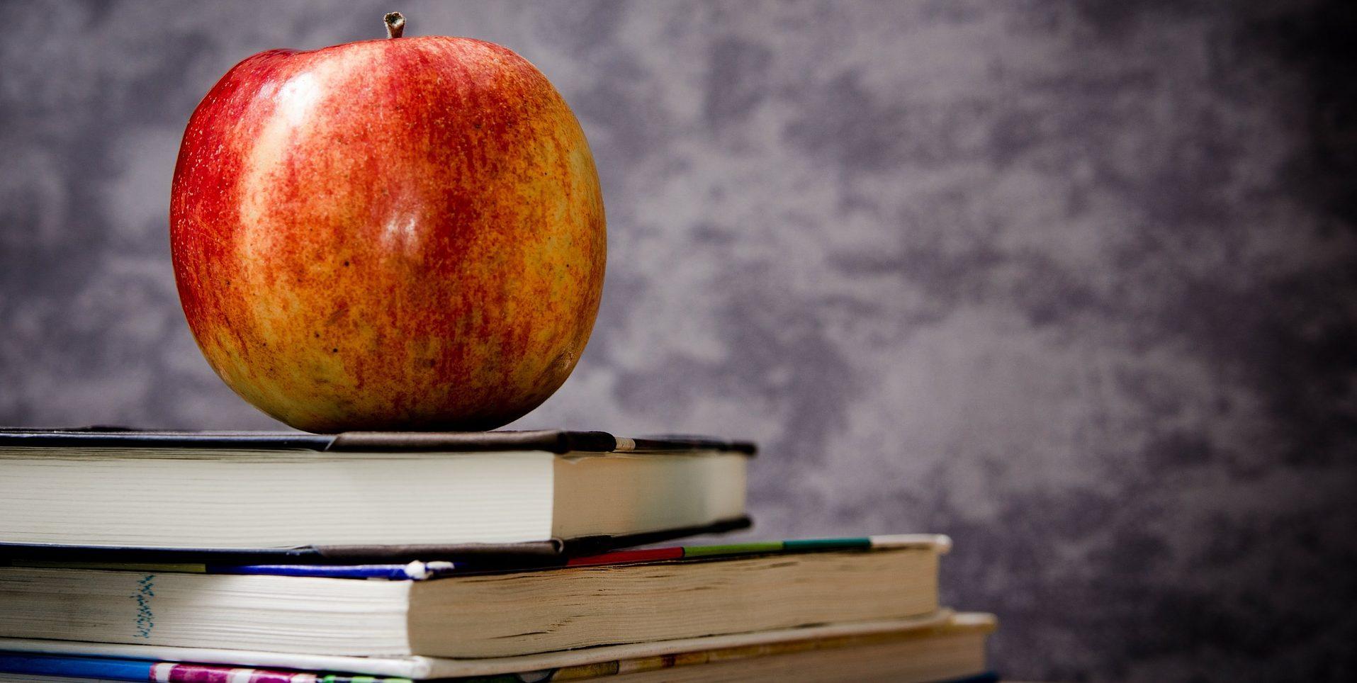 Quem Pode Adquirir Um Seguro Educacional?